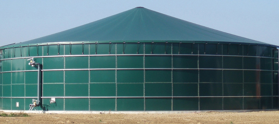 Single-Membrane-Structure-Groen-Photo-Big.jpg